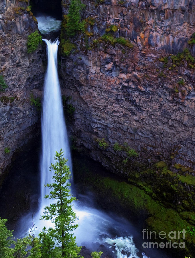 Spahat Falls Photograph - Spahats Falls by Robert Pilkington