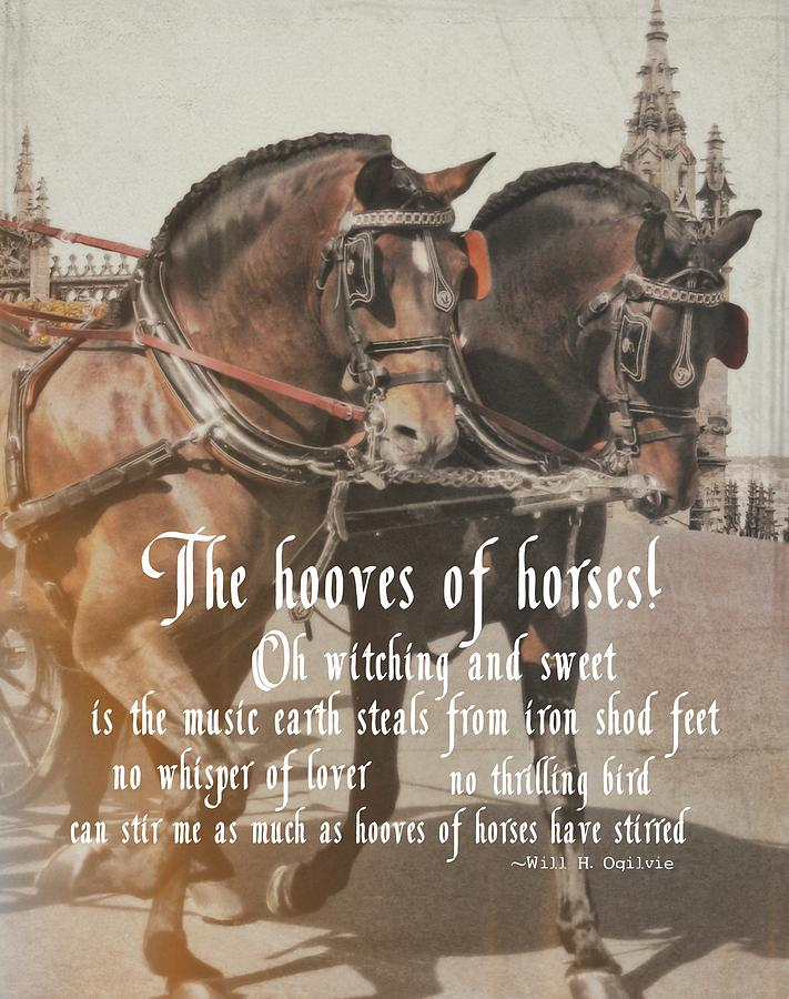 Horse Photograph - Spanish Horses Quote by JAMART Photography