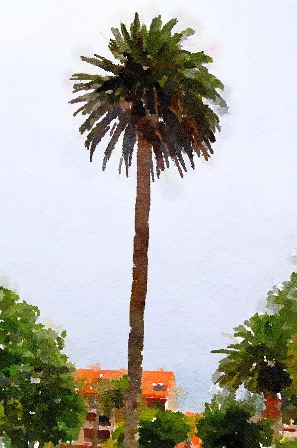 Palm Tree Painting - Spanish Palm Tree by Leah Lambart
