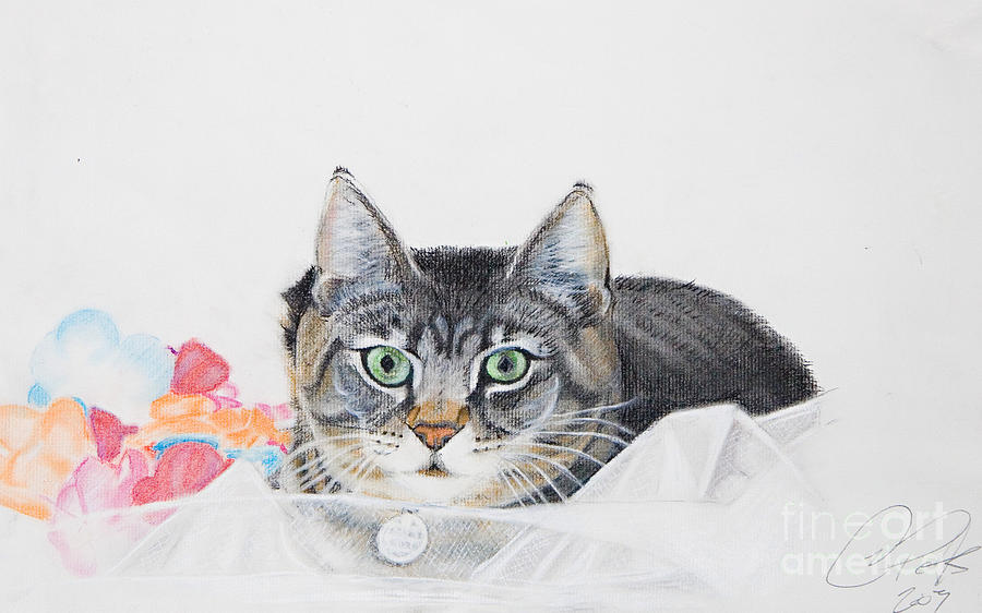 Cats Painting - Sparkle by Raymond Potts