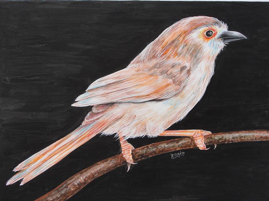 Bird Painting - Sparrow by Rajesh Chopra