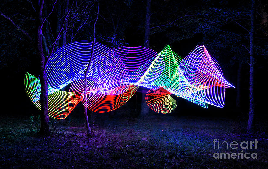 Light Painting Photograph - Spectrum Trees by Brian Jones