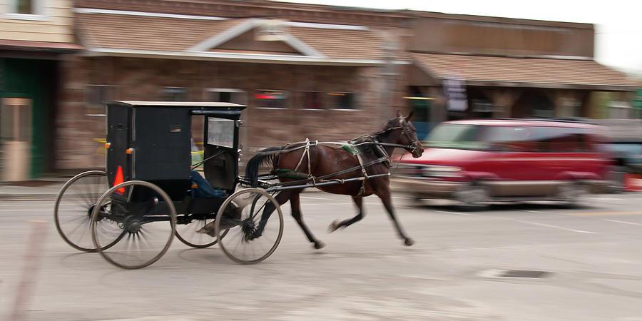 Horse Photograph - Speeding 3271 by Guy Whiteley