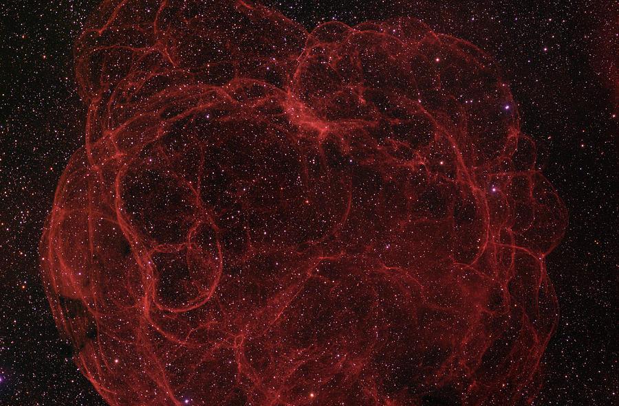 Astronomy Photograph - Speghetti Nebula by Brian Peterson