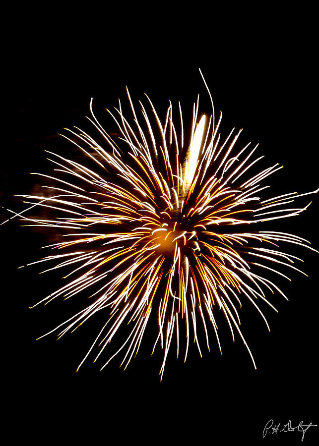 July 4th Photograph - Spider Ball by Phill Doherty