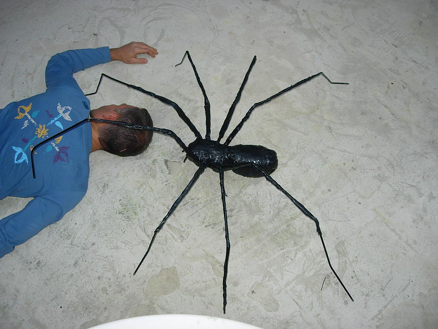 Araignee Black Spider Resin And Iron Sculpture - Spider Fun by Sebastien JUGUET