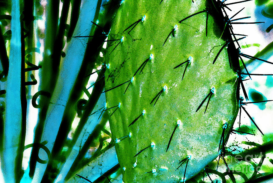 Abstract Photograph - Spike by Carl Ellis
