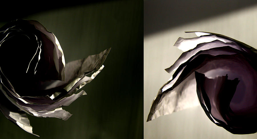 Paper Photograph - Spinning Ideas by Mark  Ross