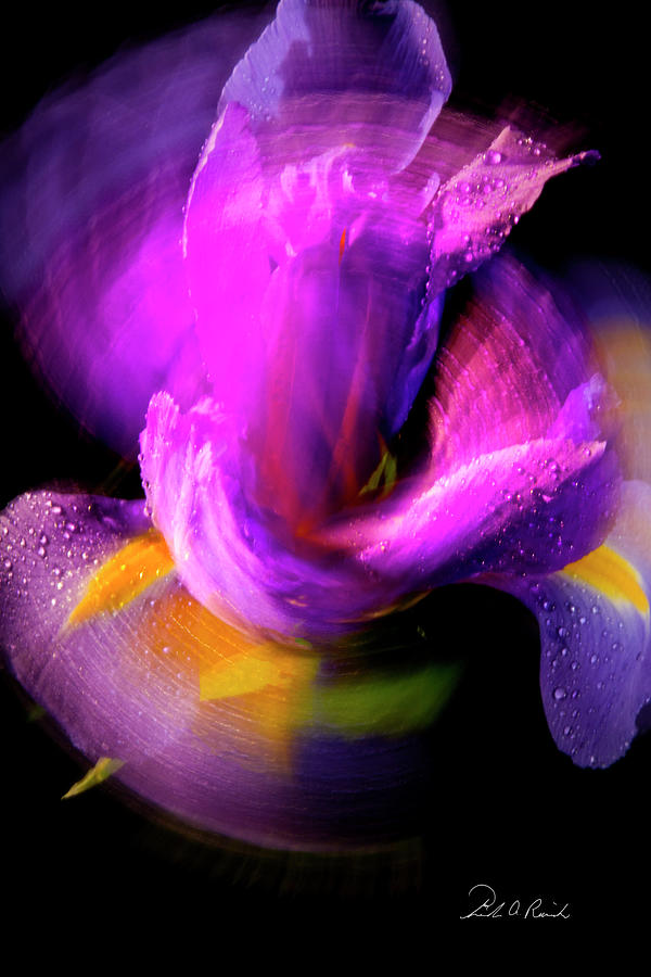 Color Photograph - Spinning Iris by Frederic A Reinecke