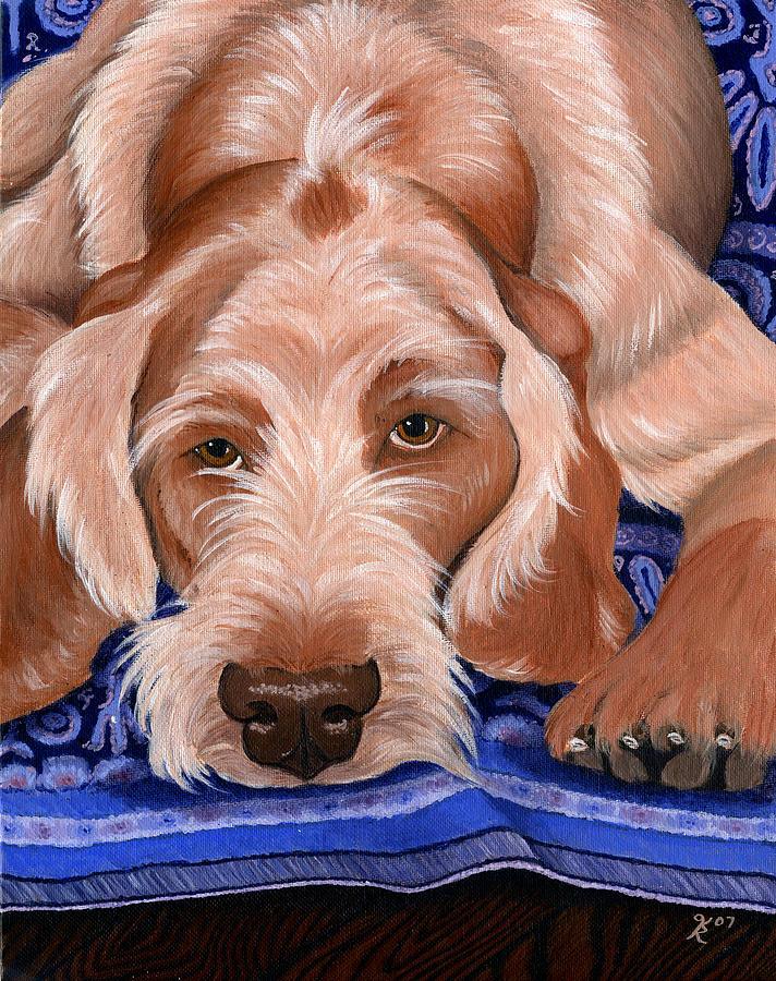 Dog Portraits Painting - Spinone Italiano by Katy Ryan