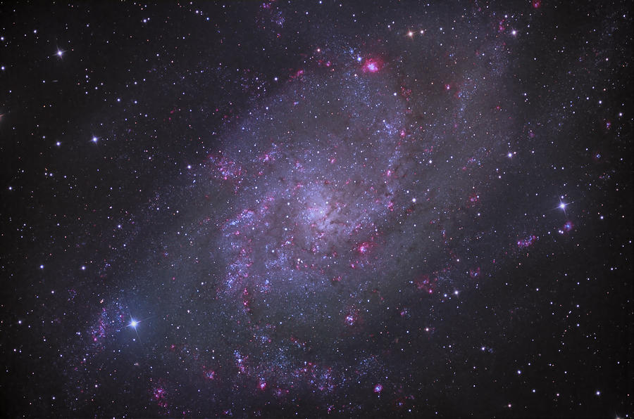 Astronomy Photograph - Spiral Galaxy M 33 by Brian Peterson