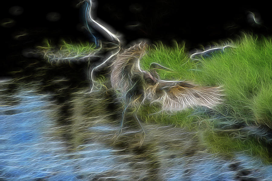 Abstract Digital Art - Spirit Garden 4 by William Horden