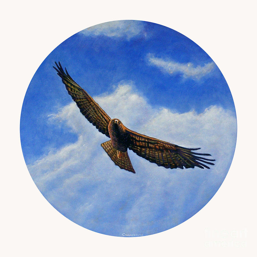 Hawk Painting - Spirit In The Wind by Brian  Commerford
