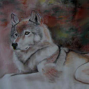 Gray Wolf Drawing - Spirit Of The Gray Wolf by Day Seriani