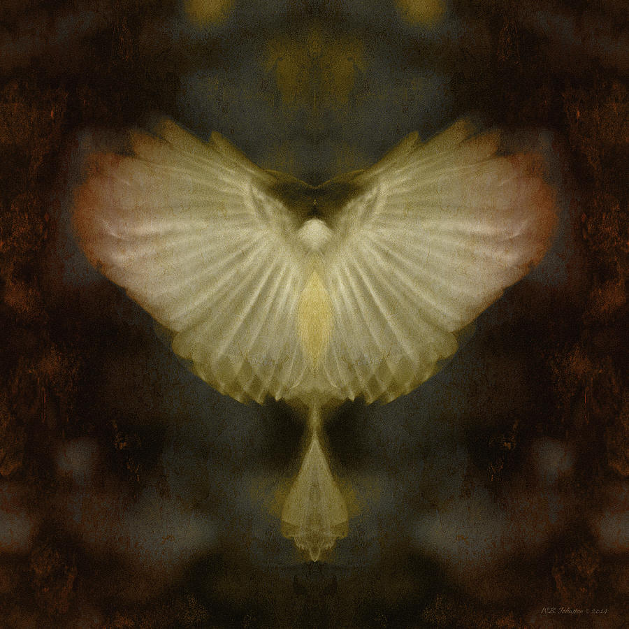 Wings Photograph - Spirit Rising by WB Johnston