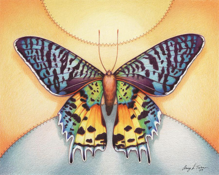 Butterfly Drawing - Spirit Sunrise by Amy S Turner
