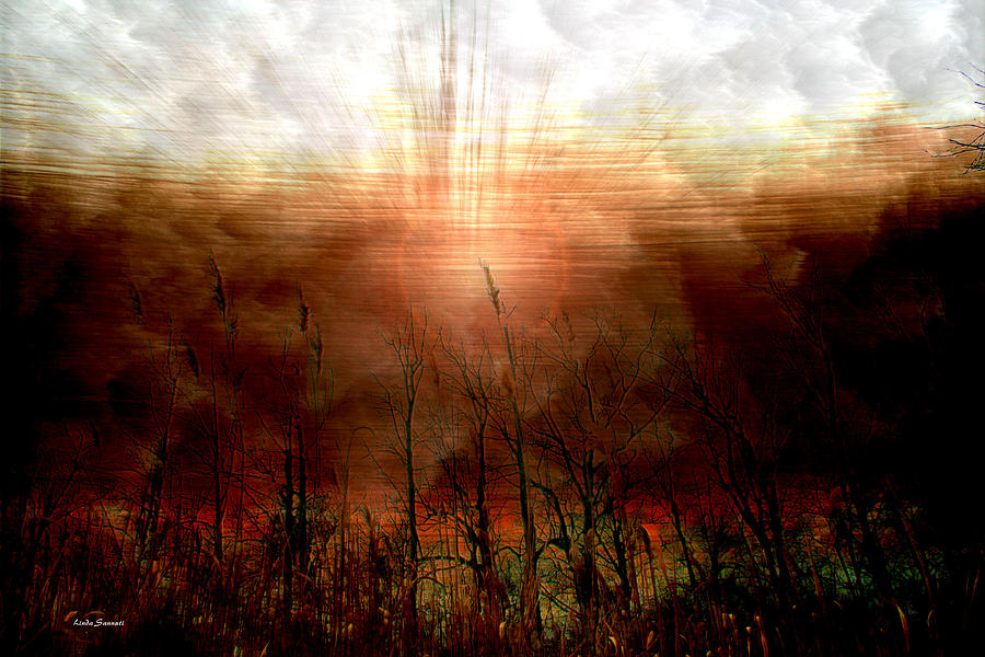 Photographs Photograph - Spiritual Awakening by Linda Sannuti