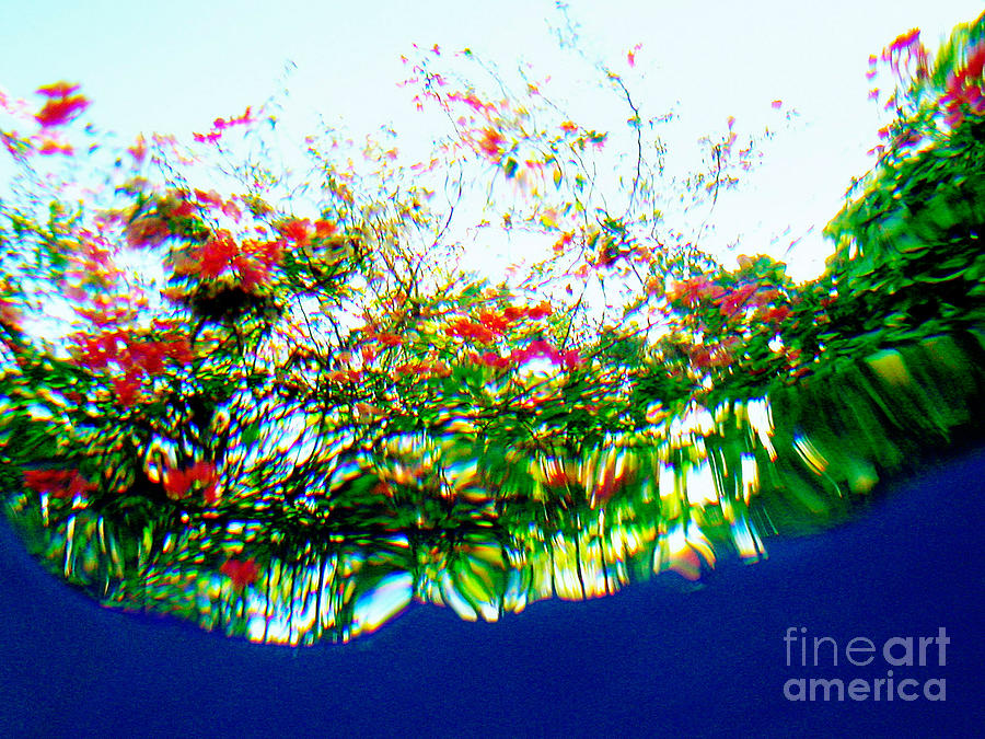 Underwater Photograph - Splash Seven by Matthew Syres