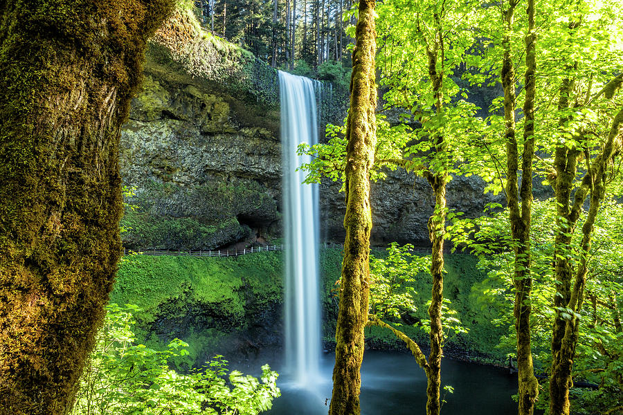 Splendor at South Falls by Belinda Greb
