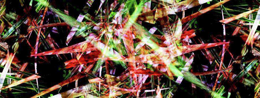 Abstract Digital Art - Splinters Dark by Sergio Caggia