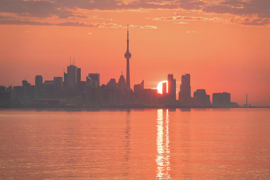 Split Sun Path - Toronto Sunrise in Vivid Living Coral Orange by Georgia Mizuleva