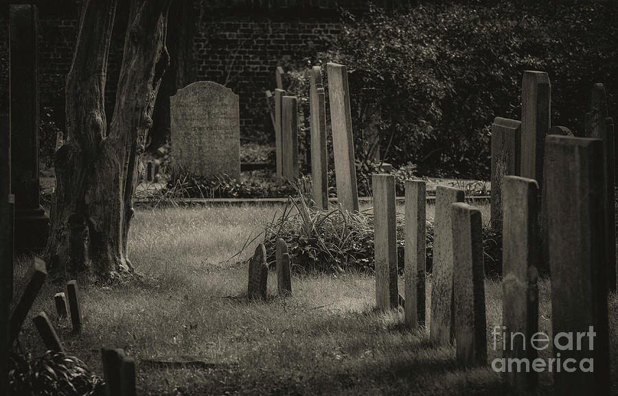 Spooky Charleston Cemetery Photograph