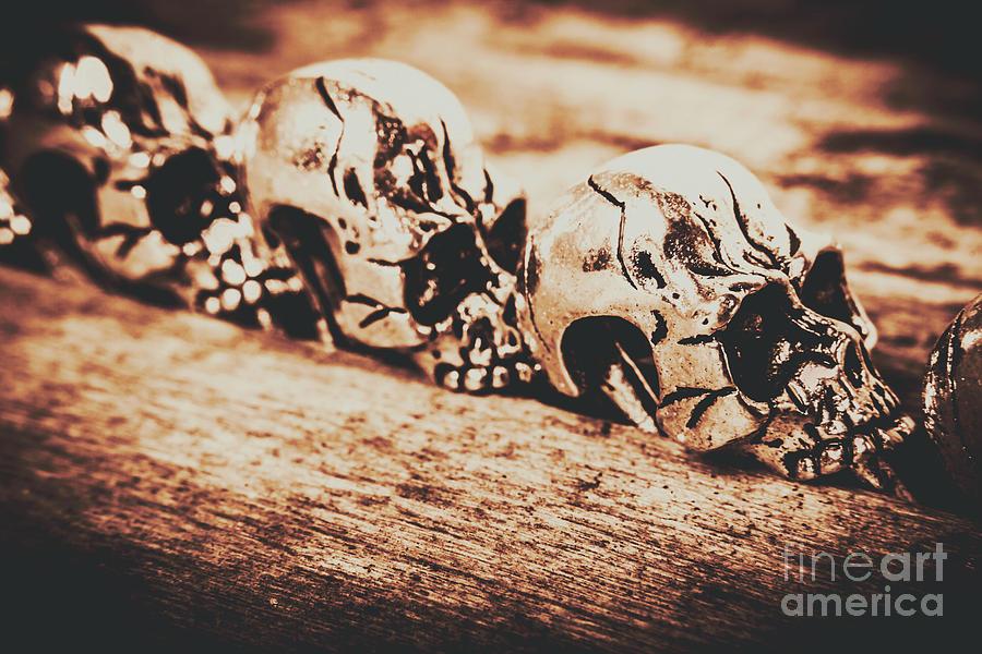Skeleton Photograph - Spooky Skeleton Craniums  by Jorgo Photography - Wall Art Gallery