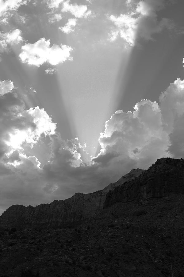 Spot Light Bw Photograph by Darren Anderson