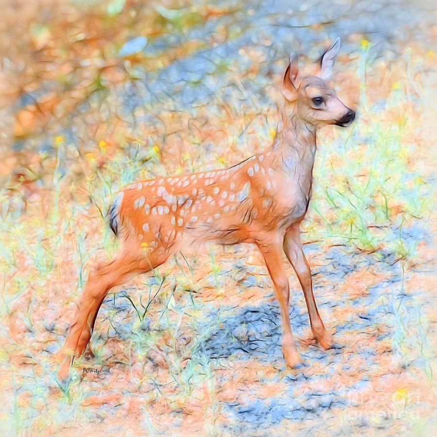 Spotted Fawn by Patrick Witz
