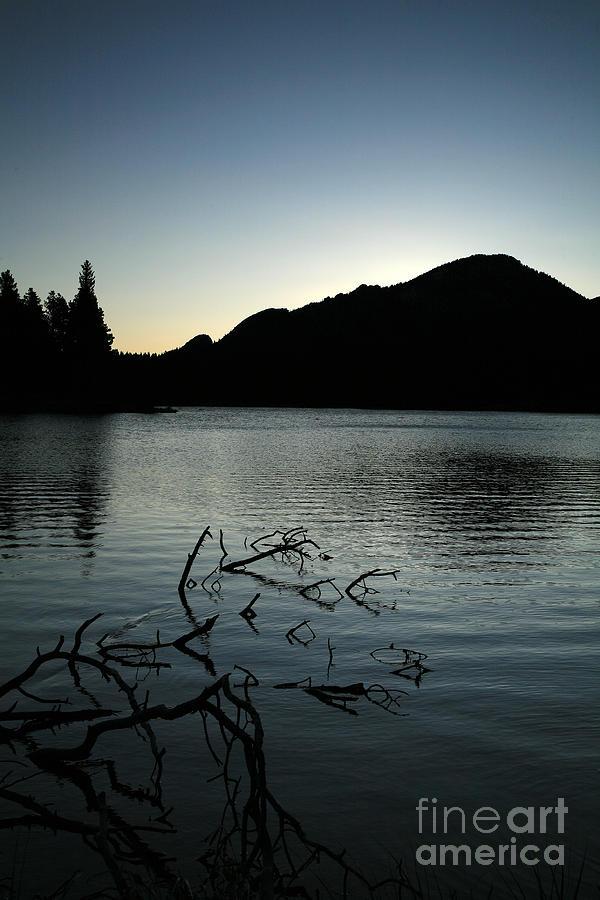 Water Photograph - Sprague Lake Dawn by Timothy Johnson