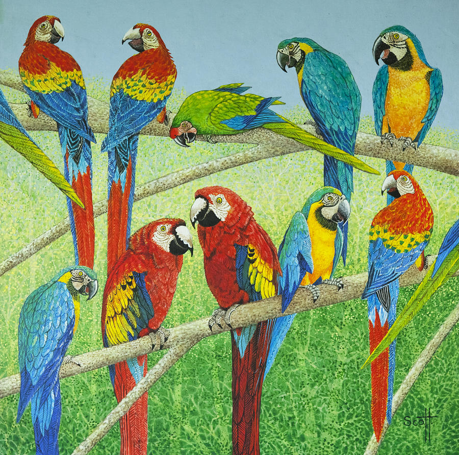 Parrot Painting - Spreading the news by Pat Scott