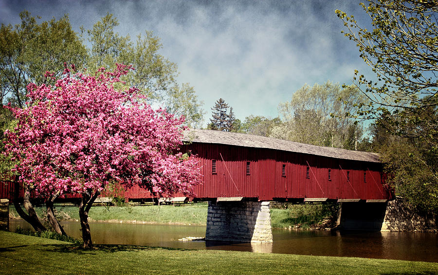 Spring At West Montrose Covered Bridge Photograph By Robin