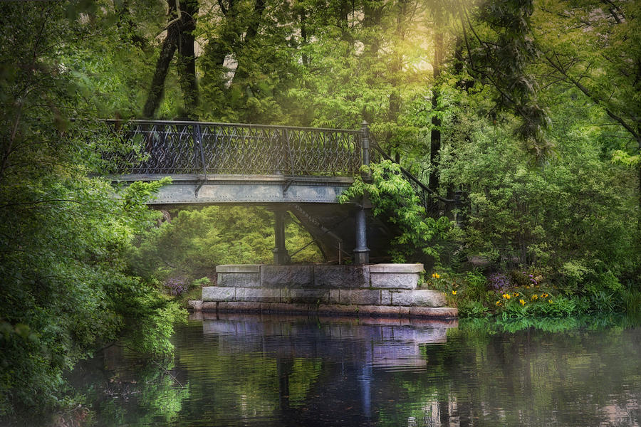 Spring Bridge by Robin-Lee Vieira