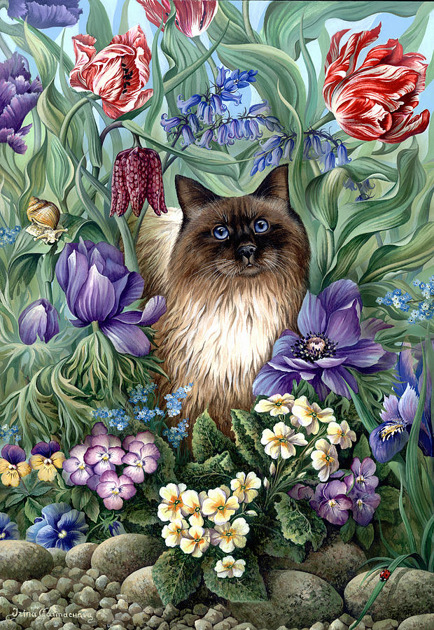 Ragdoll Photograph - Spring Cat by MGL Meiklejohn Graphics Licensing