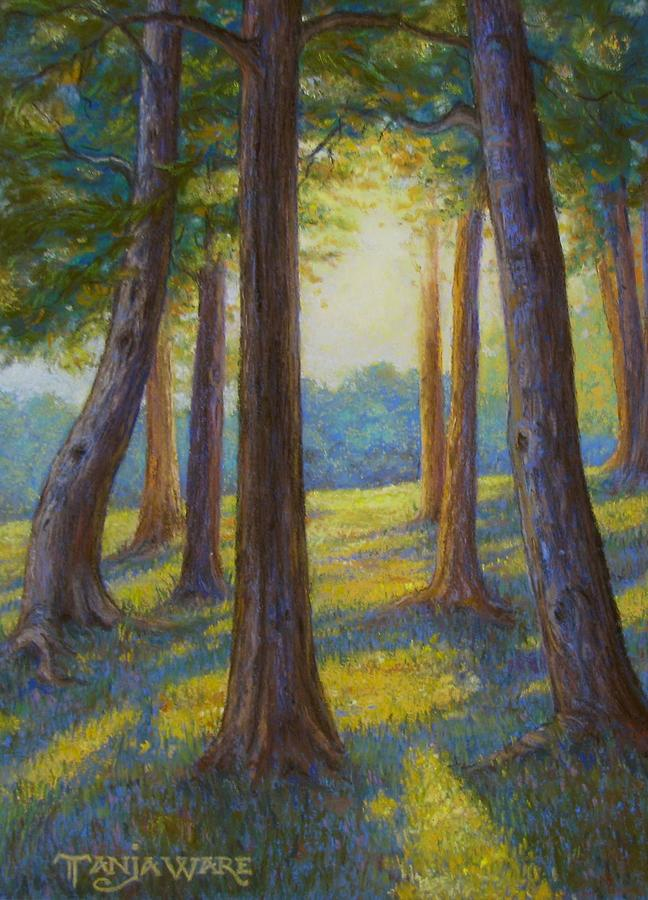 Landscape Painting - Spring Comes To Indian Point by Tanja Ware