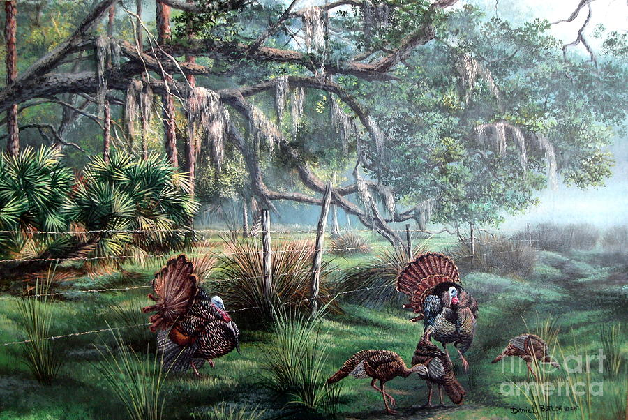Florida Landscape Painting - Spring Dance-Osceola Turkeys by Daniel Butler