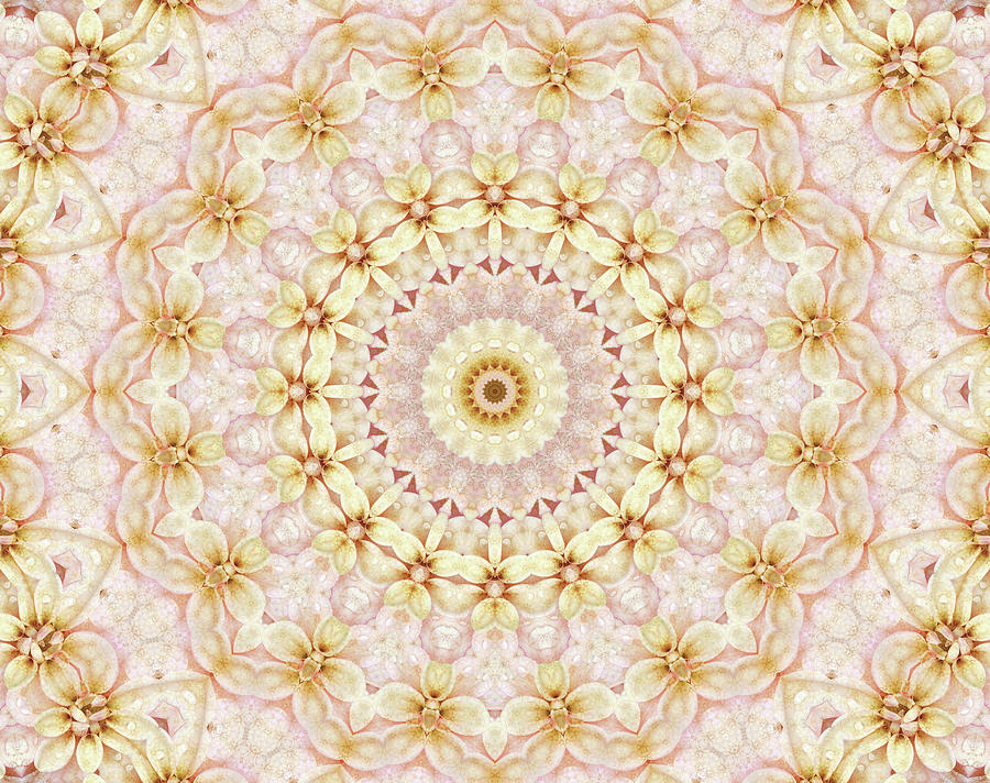 Mandala Digital Art - Spring Fantasy Floral Mandala by Janusian Gallery