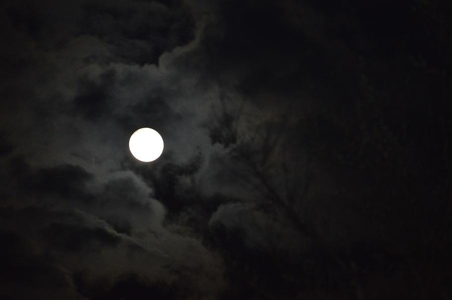 Nature Photograph - Spring Full Moon by Jimi Bush