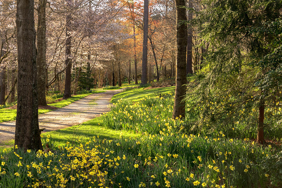 Spring Garden Path by Keith Smith