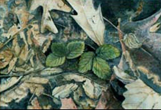 Leaves Painting - Spring Has Sprung by Carmen Durden