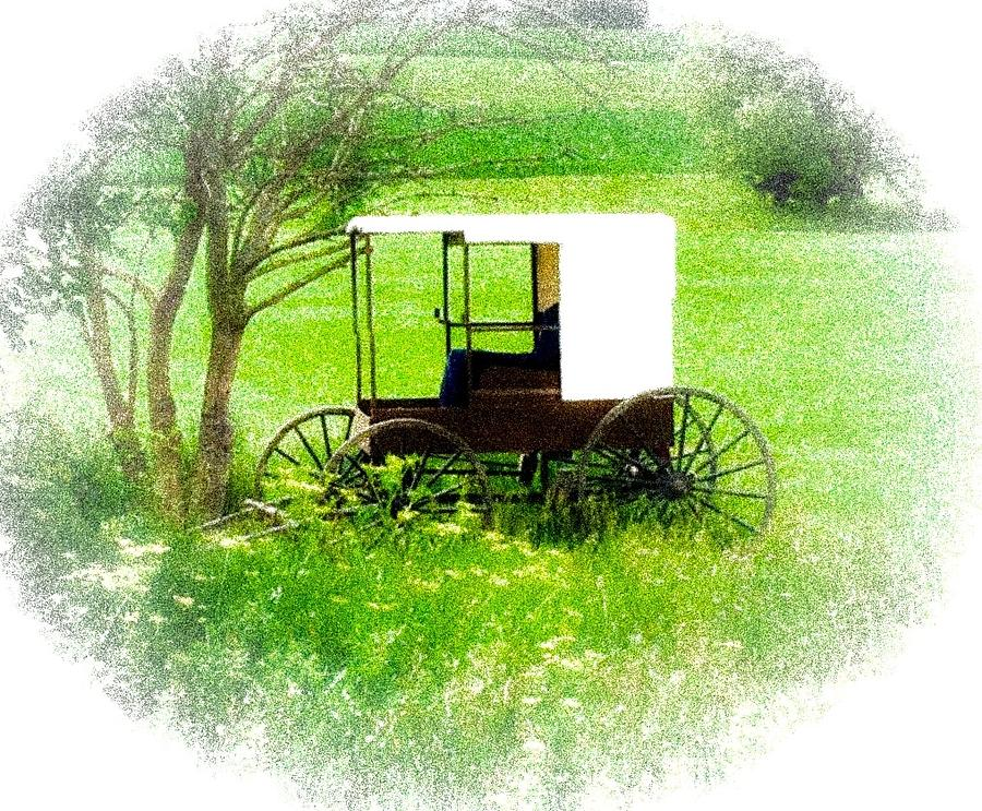 Spring in Amish Country by Wendy S Beatty