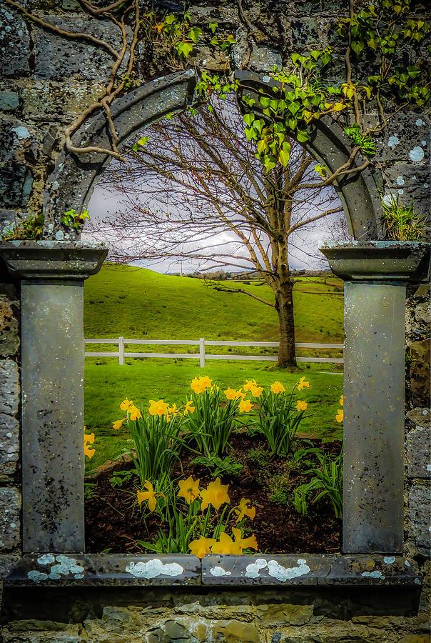 Ireland Photograph -  Spring In Ballynacally, County Clare by James Truett