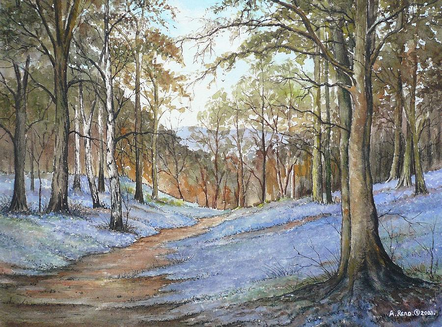 Bluebells Painting - Spring In Wentwood by Andrew Read