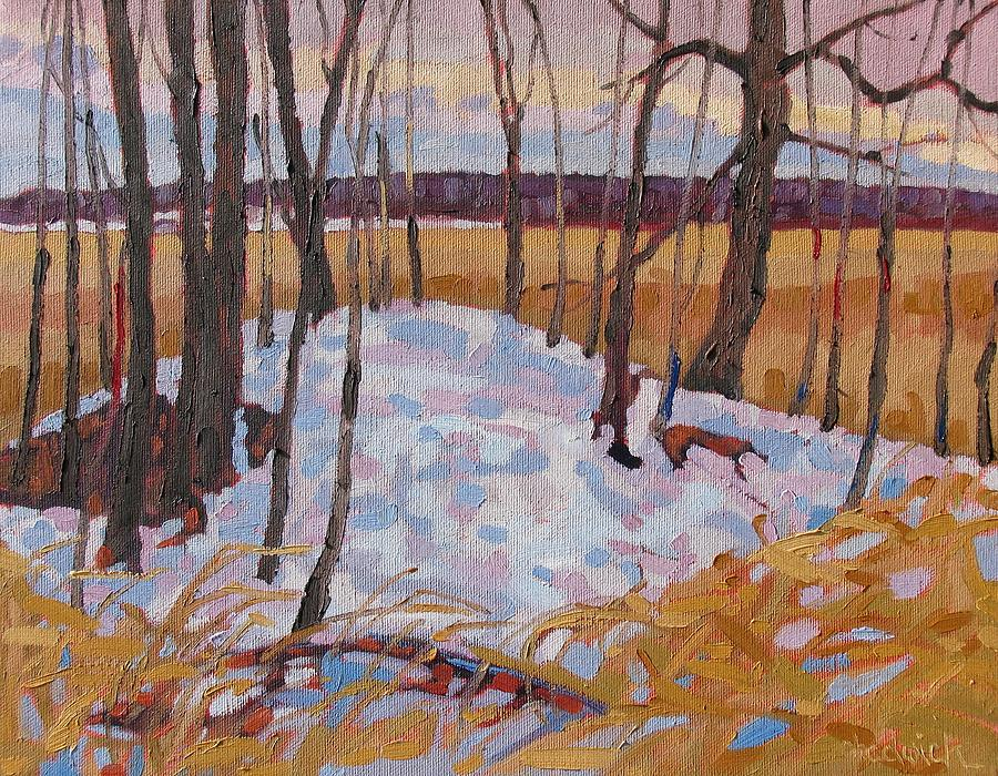 Dam Painting - Spring Island by Phil Chadwick