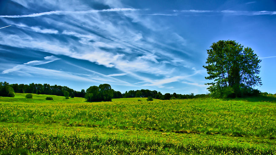 Spring Photograph - Spring Landscape In Nh by Edward Myers