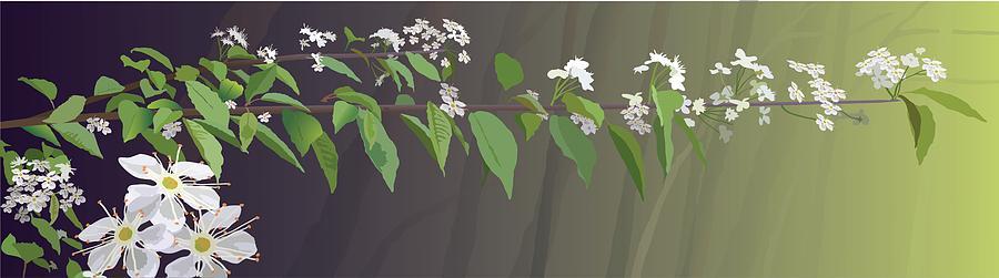 Spring Digital Art - Spring Leaves by Marian Federspiel