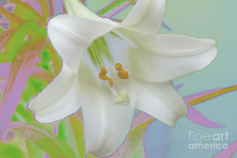 Abstract Digital Art - Spring Lily Pop Art by Susan  Lipschutz