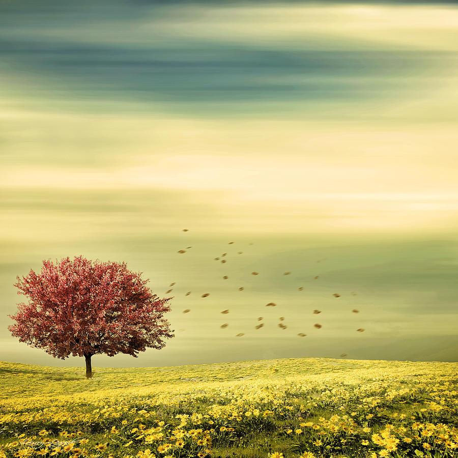 Four Seasons Photograph - Spring by Lourry Legarde