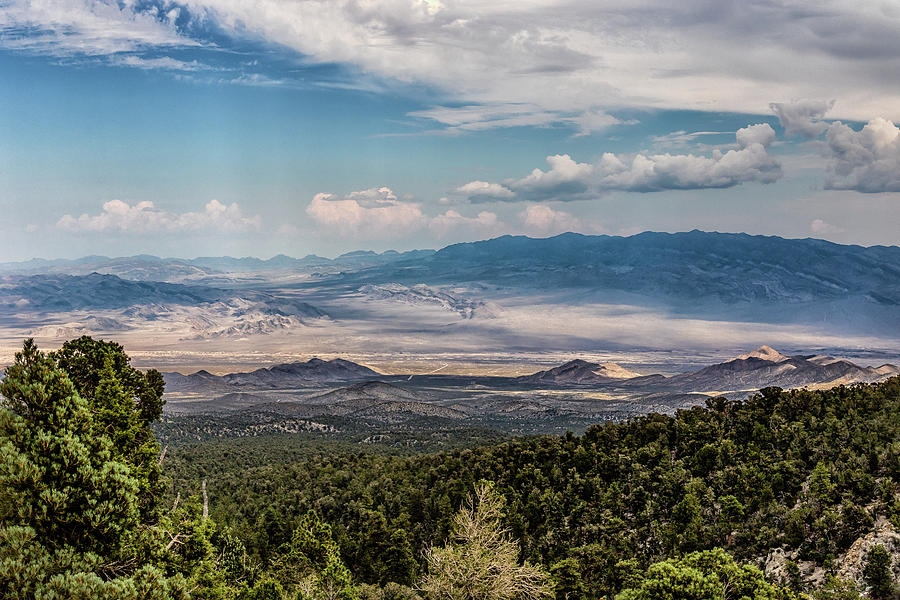 Spring Mountains Desert View by Michael Rogers