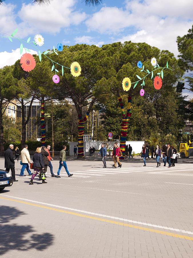 Albania Photograph - Spring On Deshmoret E Kombit Boulevard by Rae Tucker